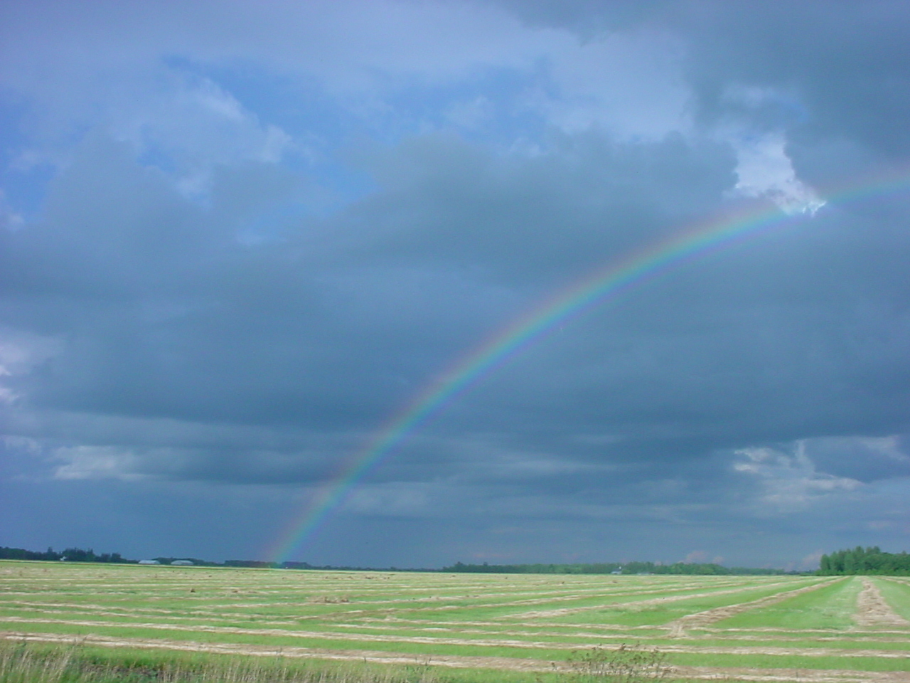 rainbow over swathes